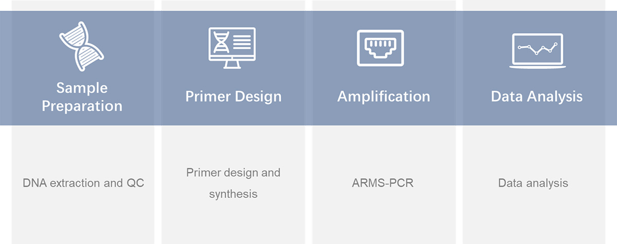 Workflow of ARMS-PCR service