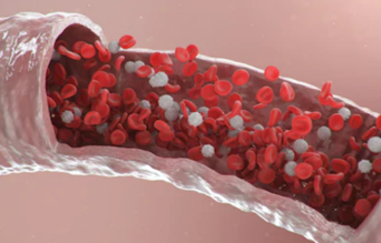 Blood Microbiome Research
