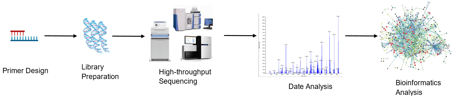 High-throughput sequencing analysis process