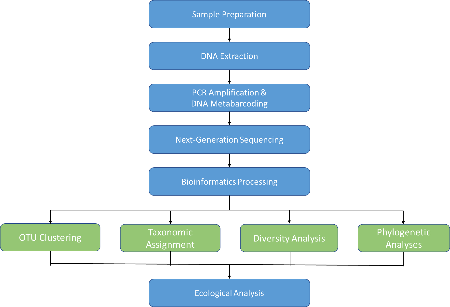 Microbial DNA Metabarcoding Workflow
