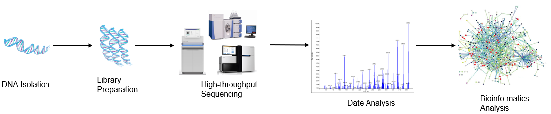 High throughput sequencing analysis process