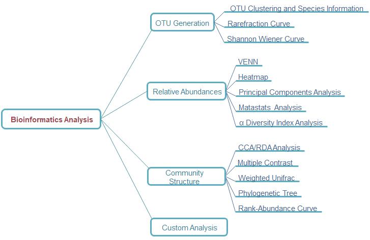 Bioinformatics Analysis