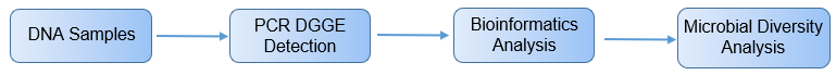Workflow for PCR-DGGE analysis process