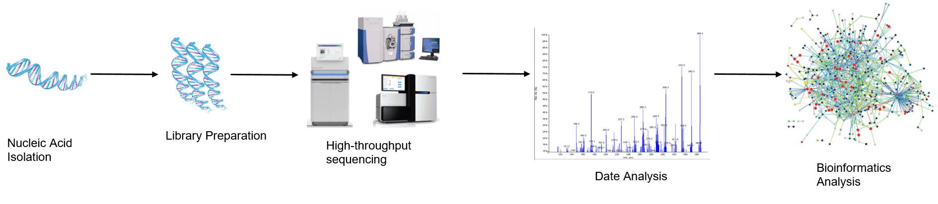 The high-throughput sequencing analysis process