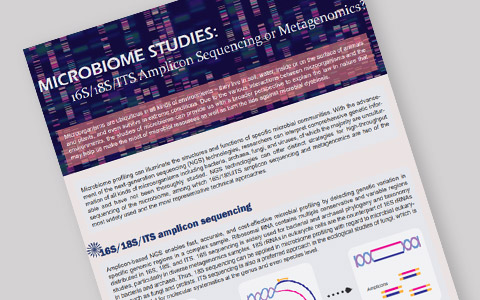 MICROBIOME STUDIES: 16S/18S/ITS amplicon sequencing or metagenomics