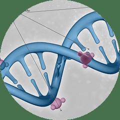 Microbial Epigenomics