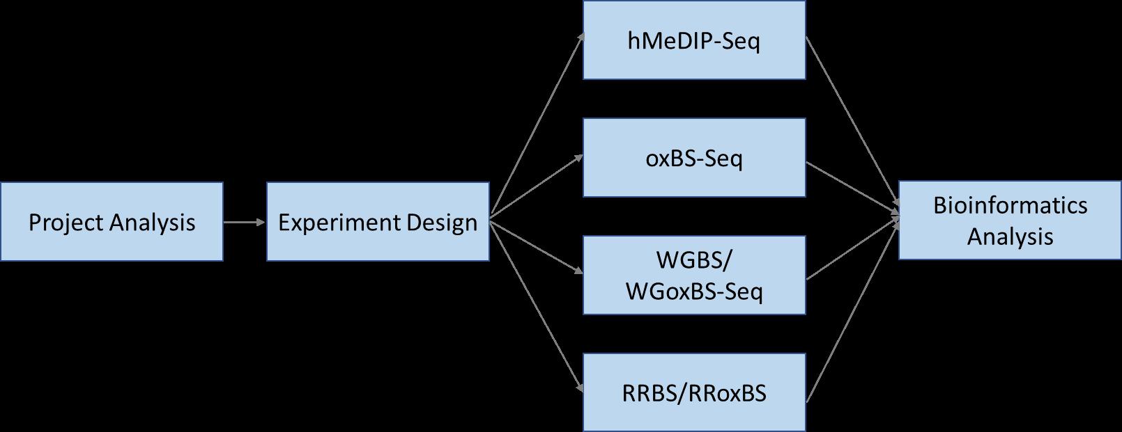 5mC/5hmC Sequencing Workflow