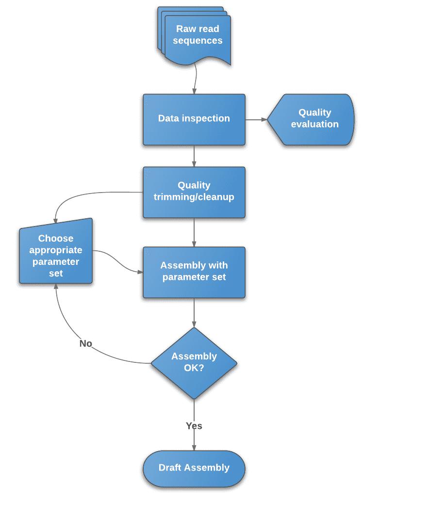 Flowchart of de novoassembly protocol.