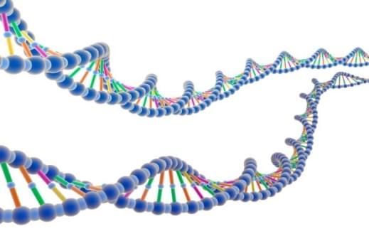 Genomic Data Analysis
