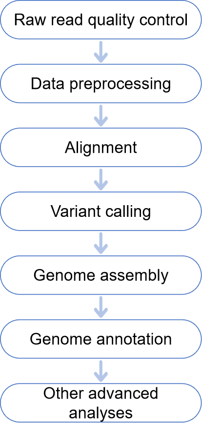 Bioinformatics Workflow for Whole Genome Sequencing