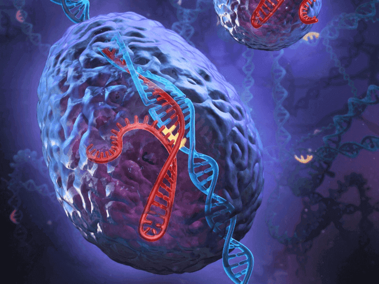 CRISPR Mutation Sequencing