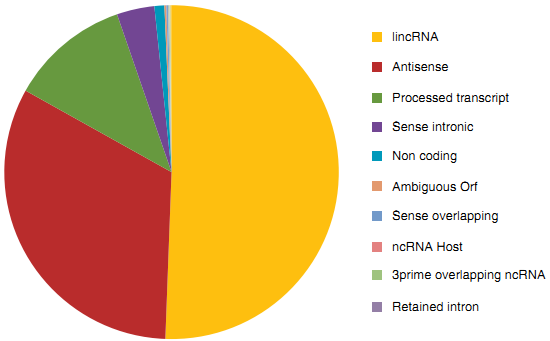 LncRNAs and Their Disease-Specific Applications