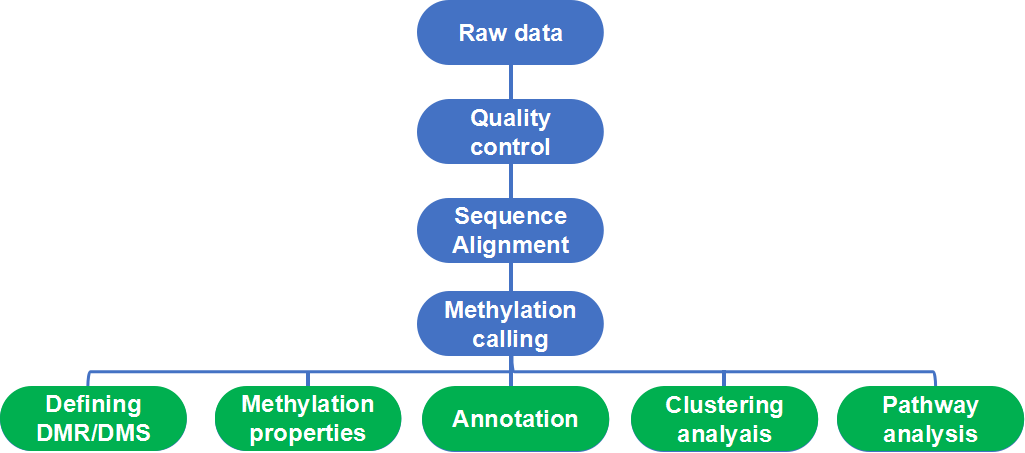 Whole Genome Bisulfite Sequencing (WGBS) Data Analysis Pipeline