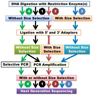 Whole Genome SNP Genotyping