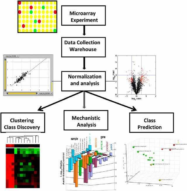 bioinformaticsservices