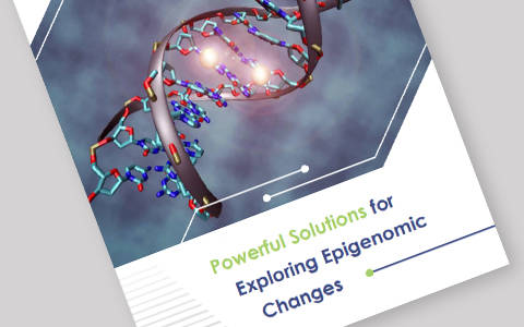 Powerful Solutions for Exploring Epigenomic Changes