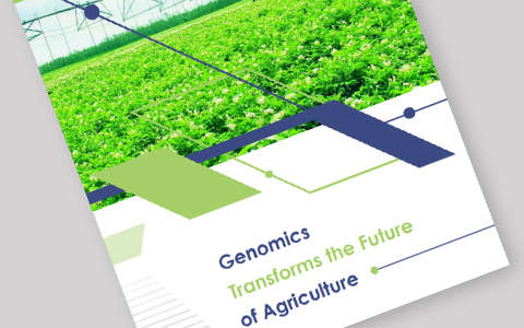Genomics Transforms the Future of Agriculture