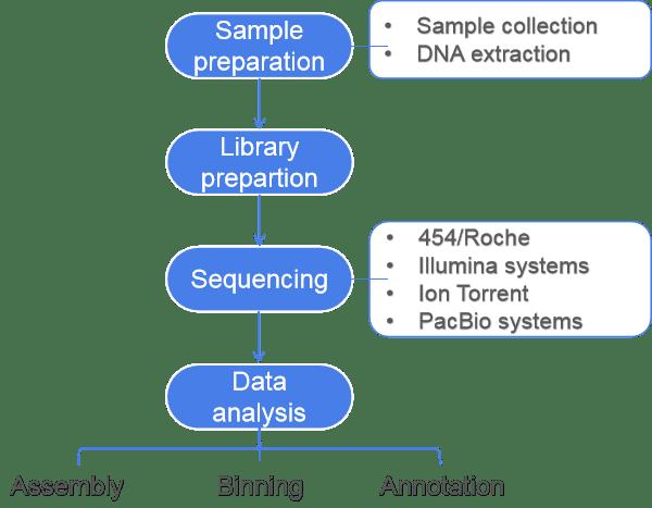 Introduction to Shotgun Metagenomics, from Sampling to Data Analysis