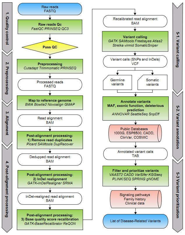 Bioinformatics Workflow of Whole Exome Sequencing