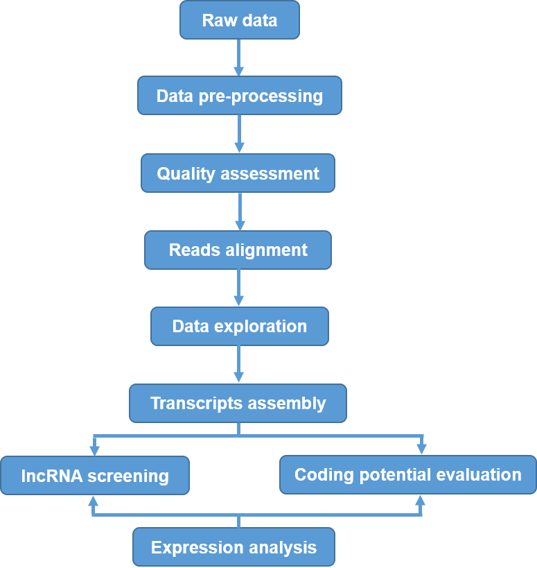 Workflow of LncRNA Sequencing and Its Data Analysis