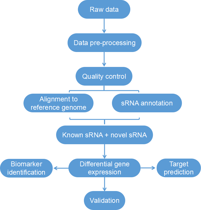 Bioinformatics Analysis of Small RNA Sequencing