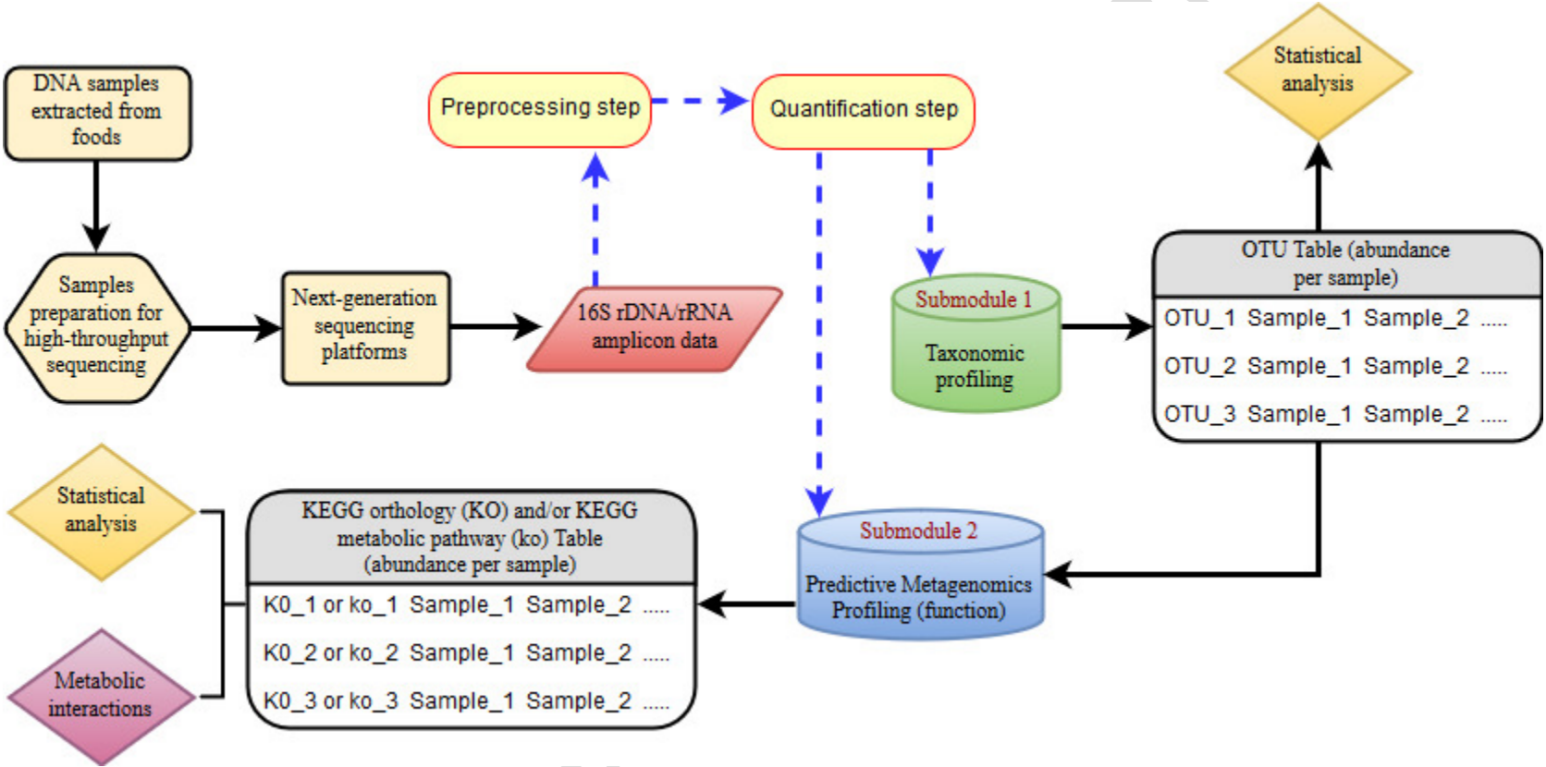Bioinformatics Analysis of 16S rRNA Amplicon Sequencing