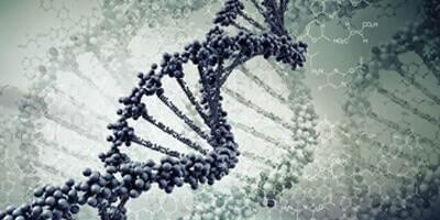 Methylation Sequencing
